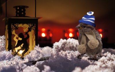 Winterbeginn – Weihnachtszeit